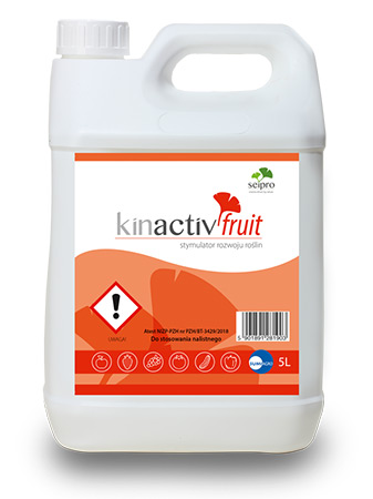 Kinactiv Fruit opakowanie